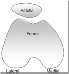 patellfemoral joint